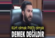 """İzol, """"Kürt olmak PKK'lı olmak demek değildir"""